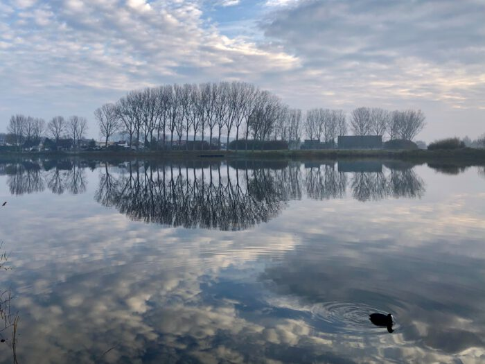 Fotografie Natuur Zeeland